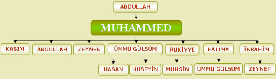Mohammed  Wikipedia